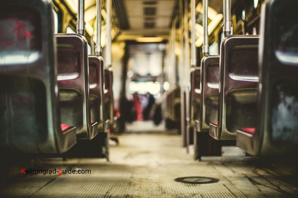 Куршская коса автобус